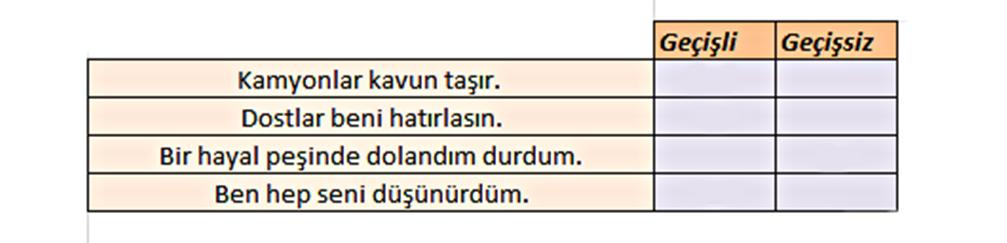 yeni nesil soru örnekleri türkçe fiilde çatı