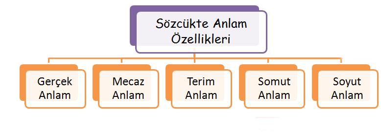 7.Sınıf Sözcükte Anlam Konu Anlatımı Kavram Harita